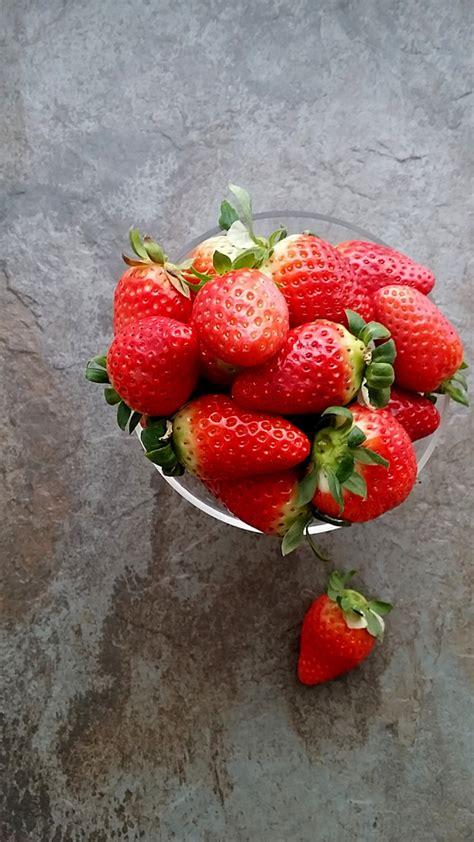 cos de fresas 8467593946 postre de fresas