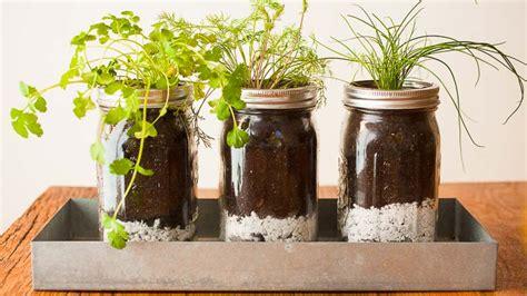diy mason jar herb garden pass  pistil