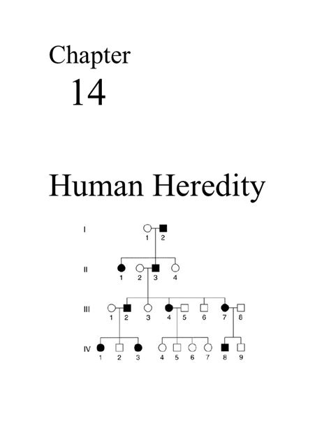 chapter 14 section 1 human heredity answers 100 human heredity worksheet answers chapter 9