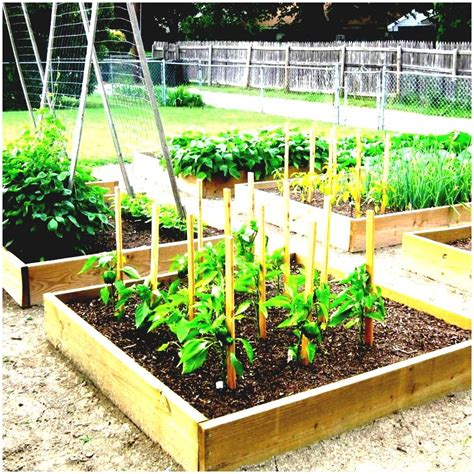 an optimized vegetable garden plan best ideas about layout