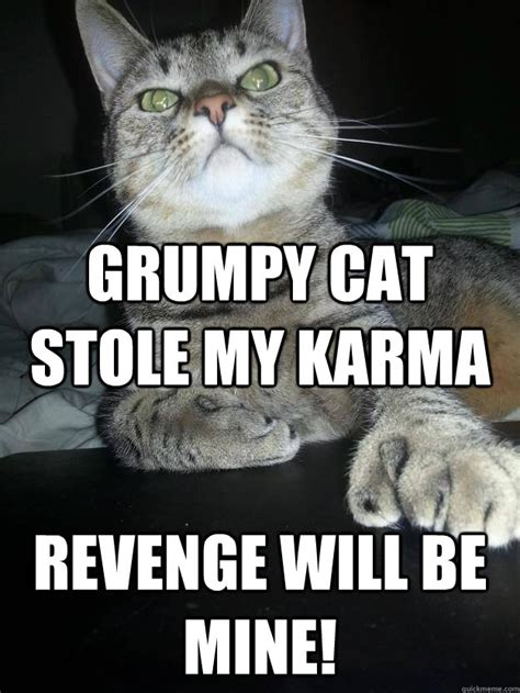 Revenge Memes - grumpy cat stole my karma revenge will be mine revenge