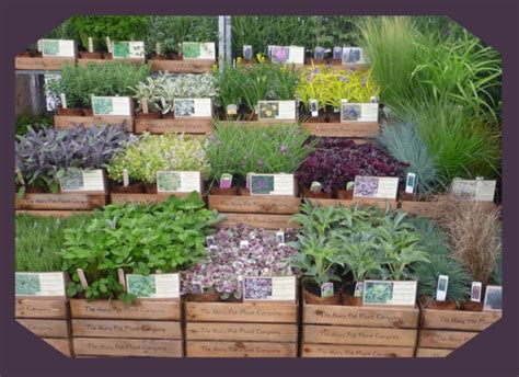 Garden Display Ideas 41