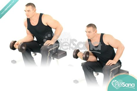 seated dumbbell curl one arm seated dumbbell wrist curl