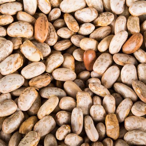 Pinto Bean Shelf by Organic Dried Pinto Beans 25 Lb