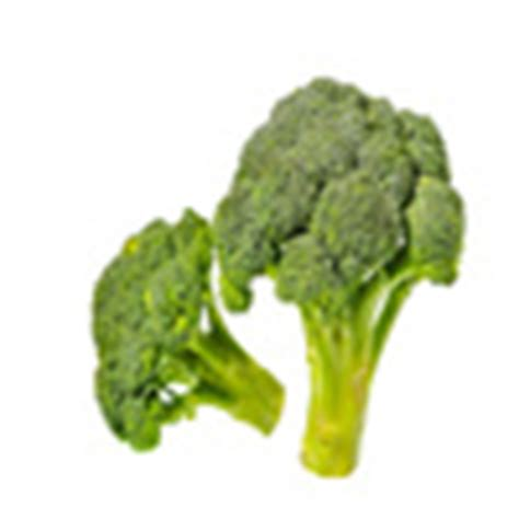 is broccoli ok for dogs fruits vegetables dogs can and can t eat