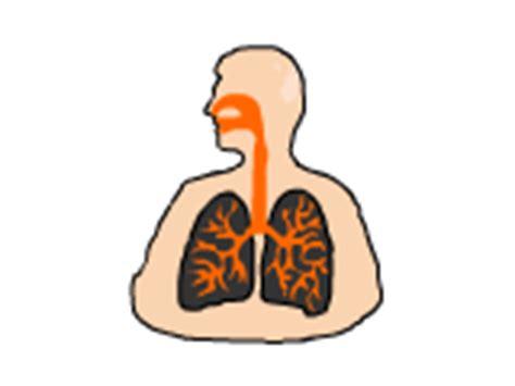 Dr P S Ap Biology Page
