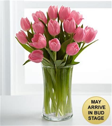 Tulips Vase by Pink Prelude Tulip Bouquet Vase Included