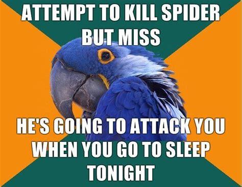 Paranoid Parrot Meme - image 93744 paranoid parrot know your meme
