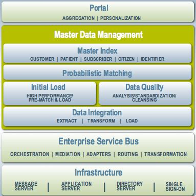 about the oracle java caps master data management suite