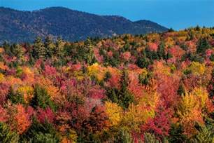 peak fall colors how to see new fall foliage at its peak