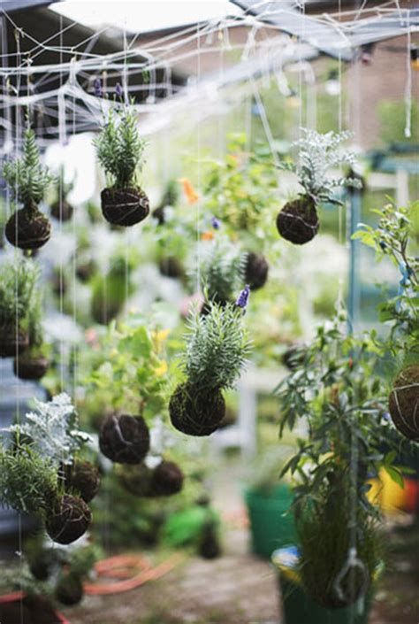 Hanging Garden Ideas String Garden Decorations Vertical Gardens And Backyard Ideas