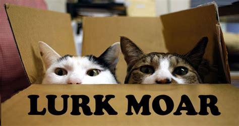 Lurking Meme - image 740024 lurk moar know your meme