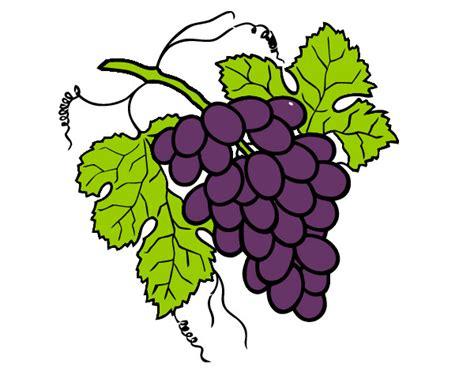 imagenes de uvas en foami dibujo de racimo de uvas pintado por brvp76 en dibujos net