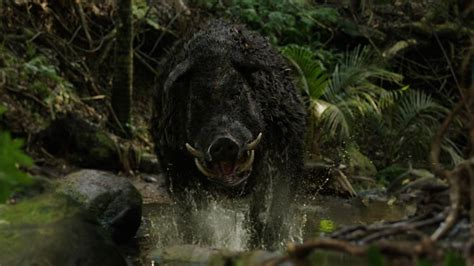 film giant pig rialto channel vfx award for the hunt for the