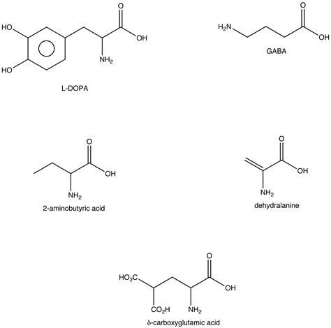 amino acid template cards diagram diagram of amino acid structure
