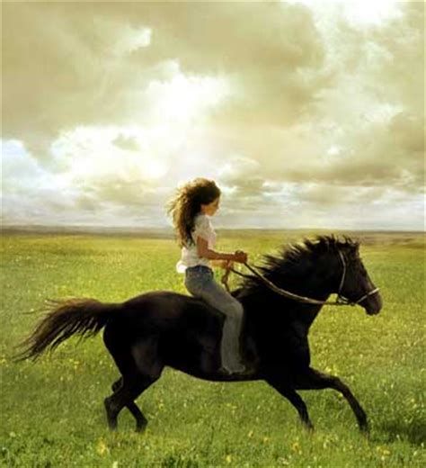 one day horse film mrs mahzuz flicka