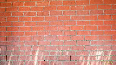 removing caked  mud  bricks todays homeowner
