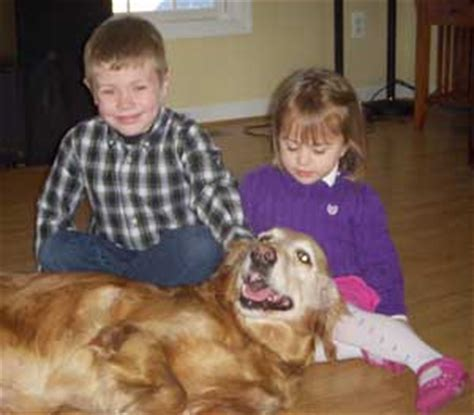 golden retriever with children golden retriever with children