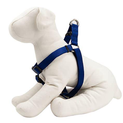 puppy harness petsmart grreat choice 174 comfort wrap step in harness harnesses petsmart