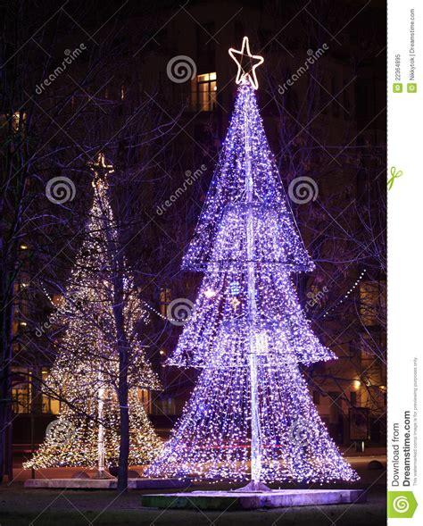 illuminated christmas trees royalty free stock photo