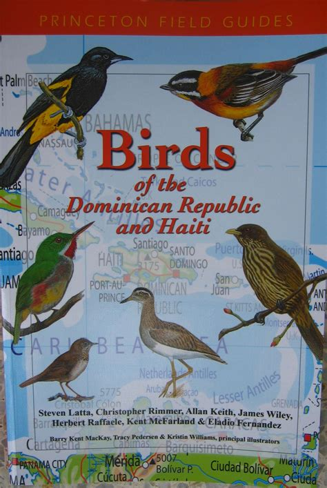 libro observar las aves bird why birdwatch in the dominican republic porqu observar aves en la repblica dominicana