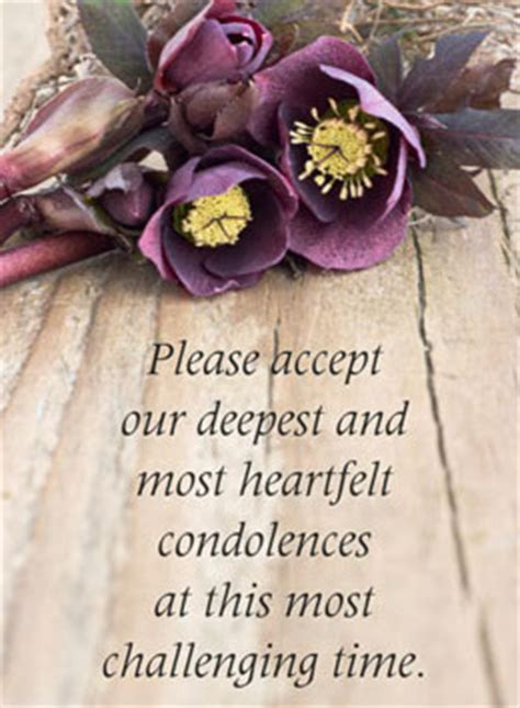 deepest sympathy words of comfort words of condolence for the loss of a loved one