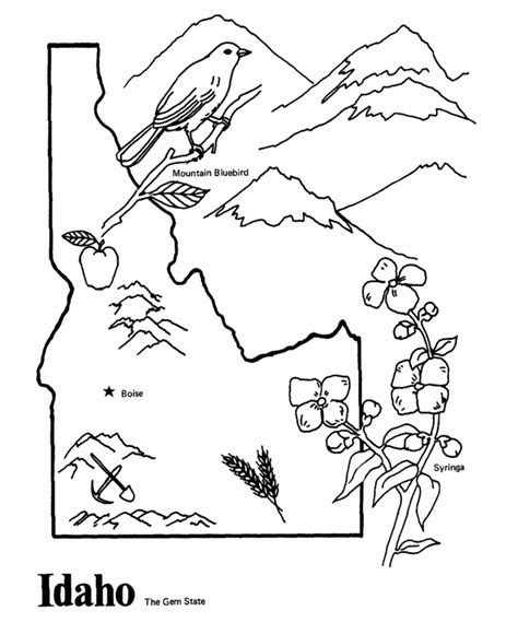 louisiana state symbols coloring pages