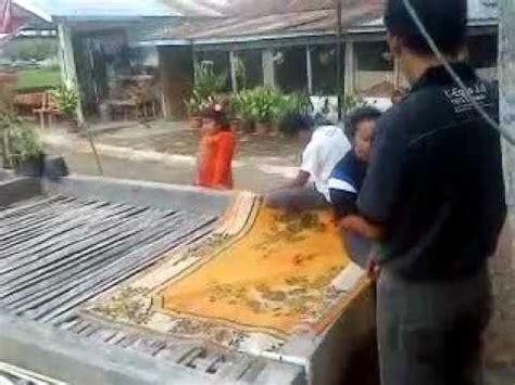 Bibit Belut Di Palembang budidaya belut kota sungai penuh