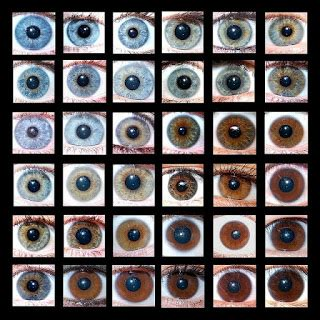 how many eye colors are there magical gains what puts you a book