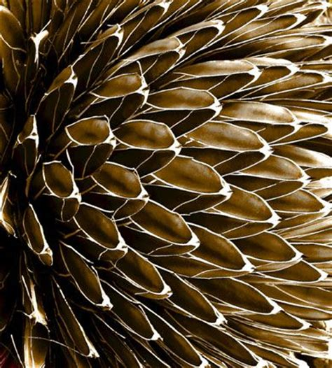 landscape pattern photography 1000 images about abstract ideas on pinterest abstract