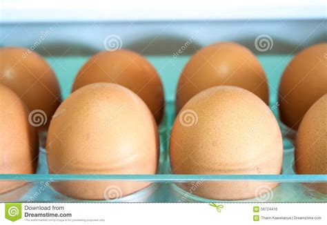 Shelf Of Refrigerated Eggs by Eggs On A White Shelf Stock Photo Image 56724416