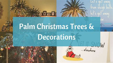 decorate the christmas tree lyrics deck the palms palm trees decorations to create a tropical oasis bliss living