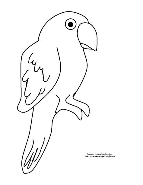 pirate parrot coloring page coloring pages