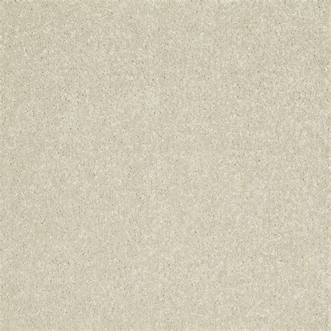 shop shaw text 254 beige almond textured interior carpet at lowes