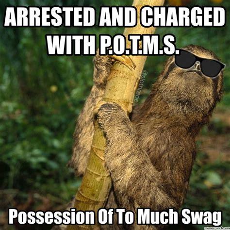 Bad Ass Memes - the 25 best sloth memes ideas on pinterest sloth humor