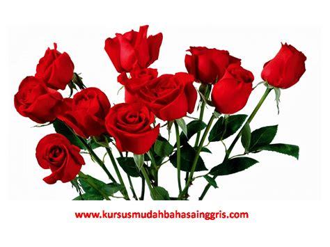 nama bunga  bahasa inggris  bahasa indonesia