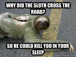 Creepy Sloth Meme - creepy sloth memes quickmeme