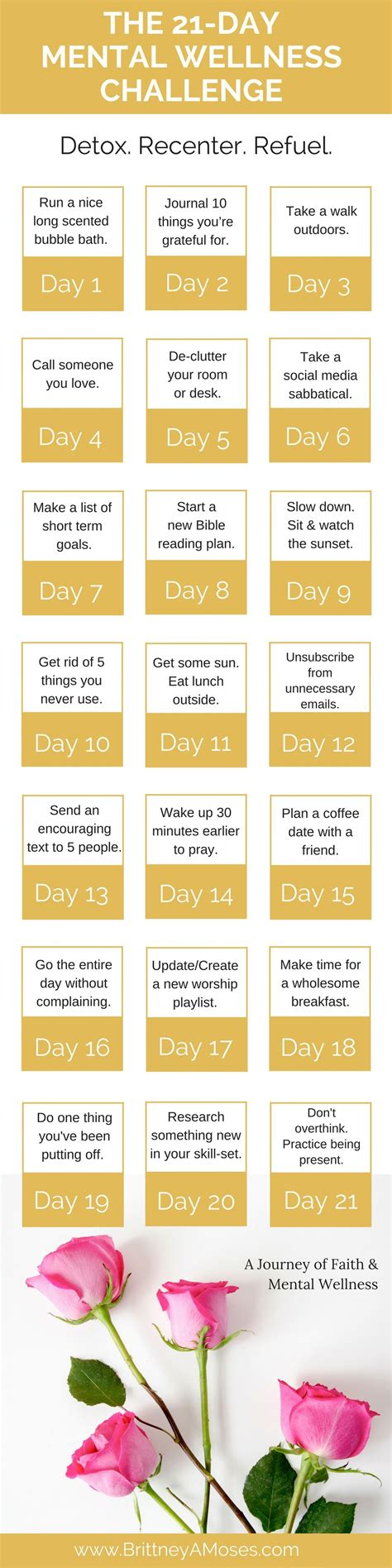 30 Day Mindset Detox Challenge by The 7 Day Anxiety Detox E Series Is Here 21st Mental