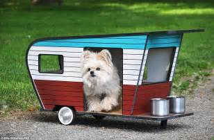 Design My Own Floor Plan Online Free by It S A Dog S Life Tiny 800 Camper Vans Set To Be The