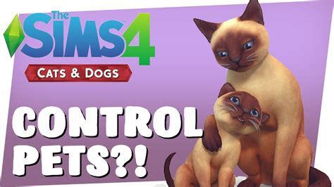 sims 4 dogs and cats sims 4 cats dogs controlling pets sims 4 pets