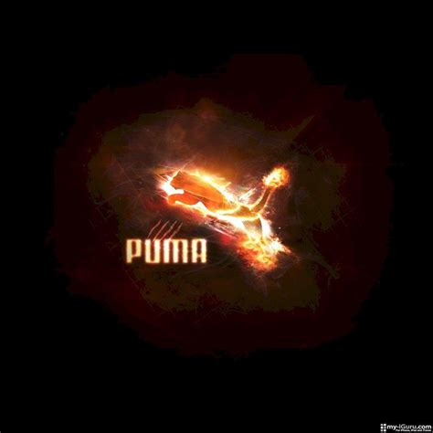 cool wallpaper brands puma logo wallpapers wallpaper cave