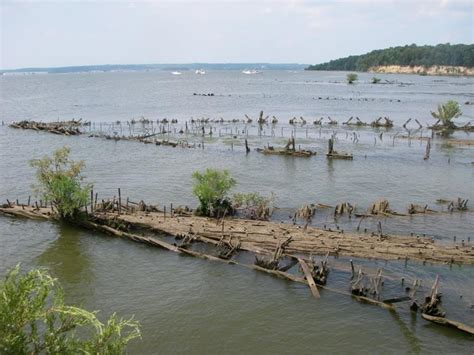 mallows bay boat graveyard mallows bay ghost fleet wrecks at mallows shallows