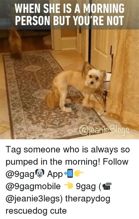 Not A Morning Person Meme - 25 best memes about egg egg memes