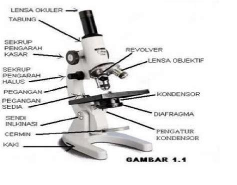 bagian bagian mikroskop fungsinya coretan iseng mahasiswa