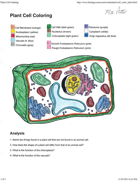 Apologia Biology Pottervilla Academics Plant Cell Coloring