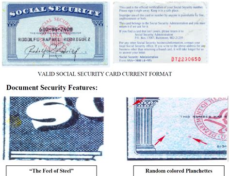 Search Using Social Security Number Social Security Card Back Www Imgkid The Image Kid Has It