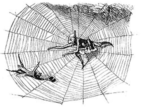 the spider and the fly a writer a murderer and a story of obsession books the creative teaching space 16