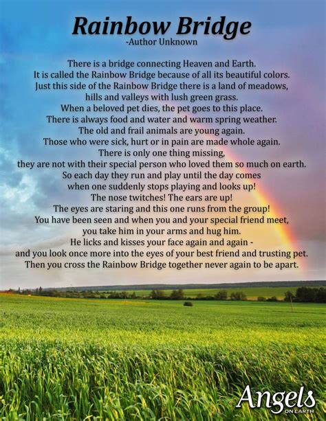 rainbow bridge poem crossing the rainbow bridge guideposts