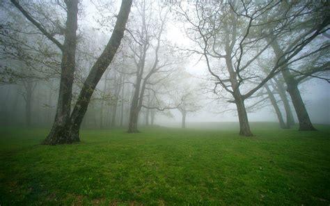 gambar gambar kabut di pagi hari yang sangat indah