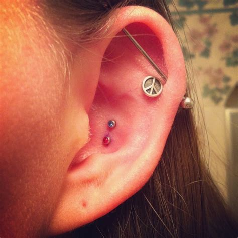 inner piercing 17 best images about piercings tragus helix etc on